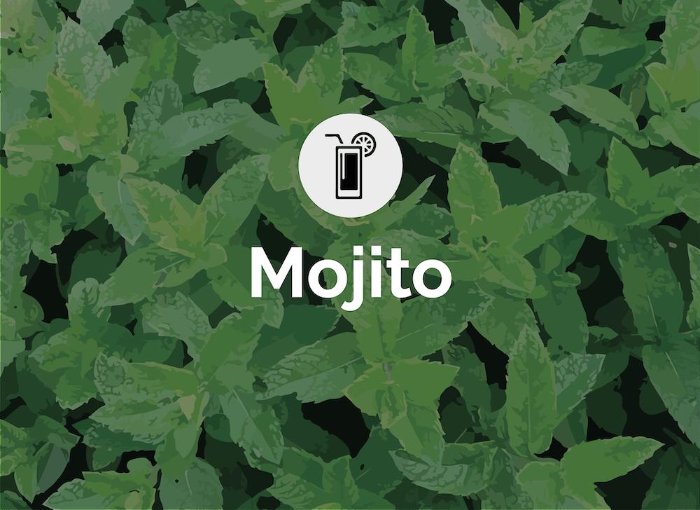 MT - Rum Cocktails V2_Mojito